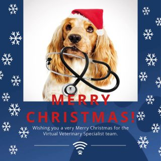 🎁🎄A VERY MERRY CHRISTMAS FROM VVS! 🎄🎁  To all of the wonderful veterinary practices we are lucky enough to work with daily we wish you a very Merry Christmas. We wish all our friends and followers a very Merry Christmas too.  Sending thanks and warm wishes go to all of the hard working vets, vet nurses and support staff working over the Christmas period.   With best wishes from the VVS team!   #merrychristmas #vvs #virtualreferral #virtualmerrychristmas #virtualvet #veterinaryreferral