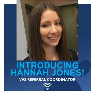⭐ We are so pleased that Hannah Jones has joined the VVS team as our new referral coordinator! ⭐  On qualifying as a veterinary nurse Hannah worked at a small animal referral centre as a multi-disciplinary nurse. She then spent 1.5 years working in emergency and critical care as a night nurse, supporting the OOHs team with both presenting primary emergencies and the management of hospitalised referral patients.  Hannah has experience of working alongside both established specialists and new-grad vets, and enjoys supporting the whole veterinary team to achieve clinical excellence with their cases. As referral co-ordinator, Hannah is on hand to guide vets through the VVS referral process, making the acquisition of specialist input, on even the most complex of cases, as easy as possible.  Hannah lives in Birmingham with her Fiancé Jamie, their two rescue bunnies and a new puppy, Miniature Schnauzer Lola.  We hope you enjoy working with her as much as we already do! Welcome Hannah! 😀  #teamvet #vvsteam #virtualreferral #virtualvet #veterinaryspecialist #virtualspecialist #veterinarymedicine #veterinaryteam #veterinarynurse #vvs #newteammember #welcome